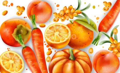 Composition of orange fruits and vegetables. Oranges, carrots, pumpkin, peaches and pyracantha berries. Vector Stock Vector