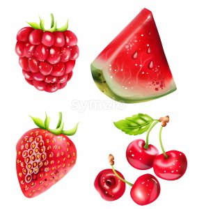 Set of Summer berries fruits with watermelon, cherry and strawberry. Vector Stock Vector