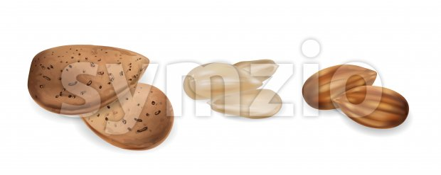 Almond nuts raw and peeled Vector realistic set. 3d detailed illustration