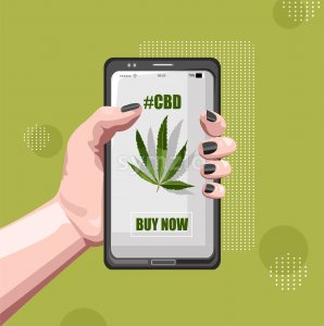 Buy marijuana online with smart phone app. Woman hands holding. Green background. Vector Stock Vector