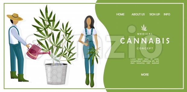 Medical cannabis concept site template with couple of farmers growing marijuana leaves in a pot. Vector Stock Vector