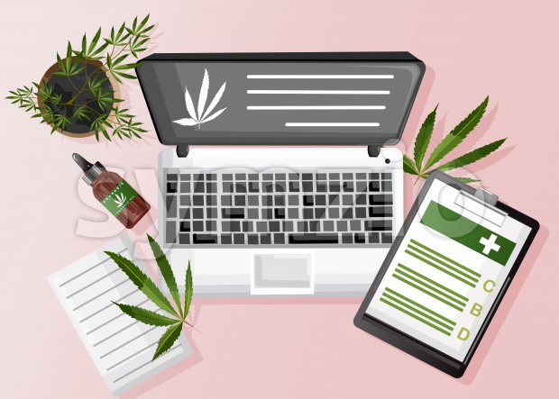 Cannabis composition with organic cbd oil, paper clipboard and marijuana site on laptop. Vector Stock Vector