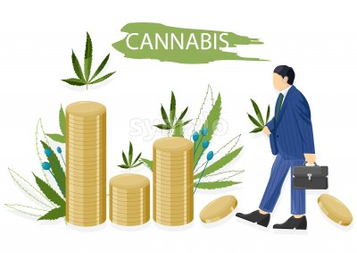 Businessman in blue clothes making money selling cannabis leaves. Vector Stock Vector