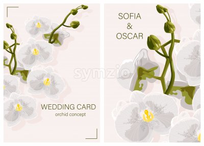 Wedding card with White Orchid Flowers concept and place for text. Vector Stock Vector