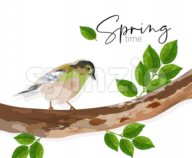Spring time swallow bird sitting on a tree branch with green leaves. Vector