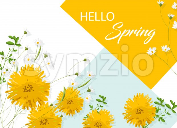 Chrysanthemum yellow flowers with white chamomile. Hello spring idea. Vector