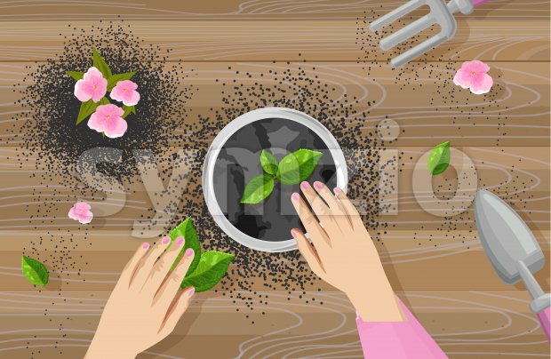Gardening concept with woman hands, shovel and rake. Tea leaves and pink flowers growing in a pot. Wooden background. Vector Stock Vector