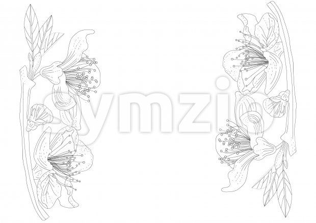 Line art lily flowers on branches with leaves. Place for text. Vector