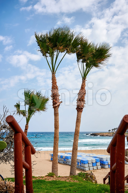 Sea cost with stairs and two palms on the foreground and blue water on the background in Ayia Napa Stock Photo