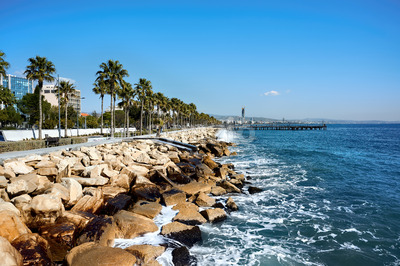 Stony coastline of Mediteranean sea and rows of palms growing near it in Limassol, Cyprus Stock Photo