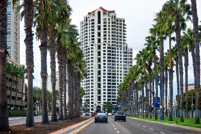 Road with full of palm trees and a building in the background in San Diego Stock Photo
