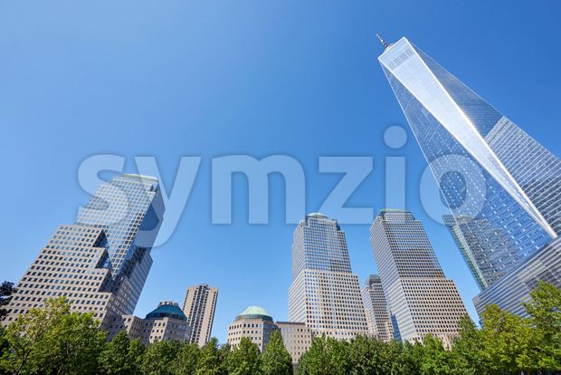 Wide shot of the World Trade Center in New York with lots of high and modern buildings near it and green trees in the foreground, the sky behind the Stock Photo