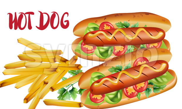 Composition of two hot dogs with cherry tomatoes, basil, parsley and mustard, near a portion of fries. Unhealthy food. Vector Stock Vector