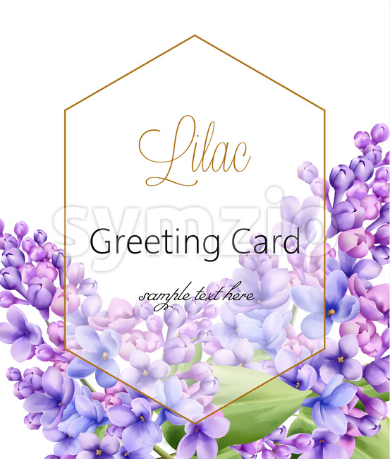 Lilac flower on white background with golden hexagon greeting card with place for text. Vector