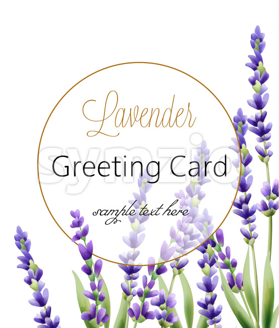 Greeting card with lavender flowers and place for text. Vector Stock Vector