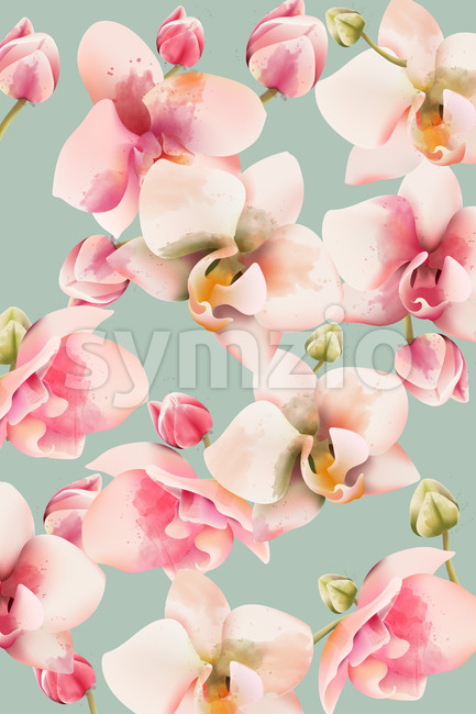 Orchid bouquet pattern background. Watercolor. Spring flowers. Vector