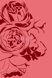 Illustration of two red peony flowers on pink background. Vector Stock Vector
