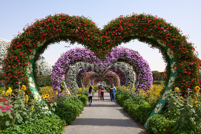 DUBAI, UNITED ARAB EMIRATES - FEBRUARY 23, 2019: Colorful Heart shaped flowers in Miracle Garden. Tourists walking Stock Photo