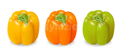 Realistic and colorful yellow, orange and green pepper. Vector Stock Vector