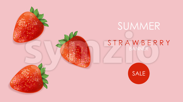 Summer sale banner with strawberry fruits and rose background. Vector Stock Vector