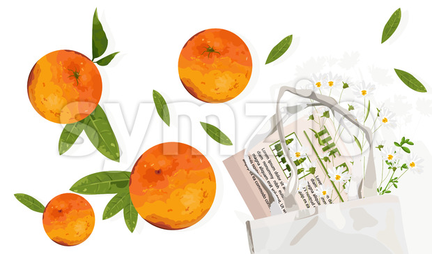 Orange fruits with leaves and ecology bag. Reusable eco friendly products advertising. Vector Stock Vector