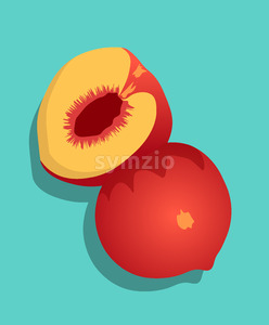 Composition of half sliced peach fruit on turquoise background. Vector Stock Vector