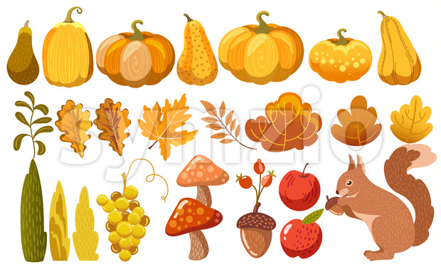 Set of pumpkins, leaves, bushes, mushrooms, acorn, grapes, apples and a squirrel. Autumn thematics. Vector Stock Vector