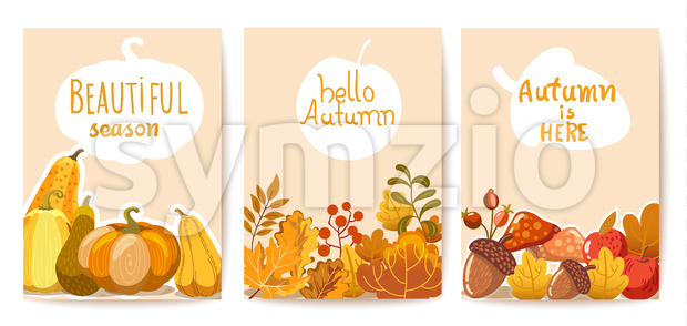 Set of three autumn cards. Pumpkins, leaves and twigs, acorns, apples and mushrooms. Place for text. Vector