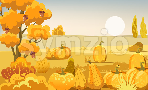 Field with pumpkins, bushes and a tree with acorns. Autumn thematics. Vector Stock Vector