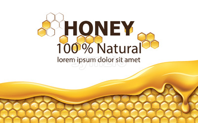 Honeycombs covered in dripping honey. Natural product. With place for text. Realistic. Vector Stock Vector