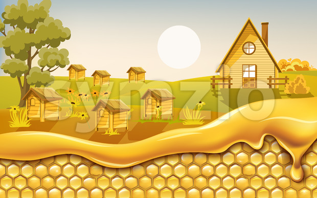 Honeycombs covered in dripping honey with a field full of beehives surrounded by flowers in background. Vector