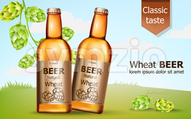 Two bottles of natural wheat beer surrounded by hops. Classic taste. 3D mockup with product placement. Realistic Vector Stock Vector