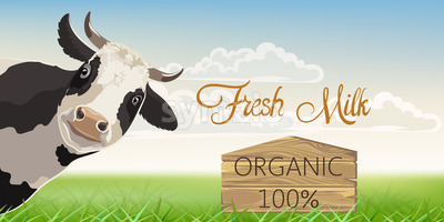 A cow with black spots with a meadow in background. Organic fresh milk. 3D mockup product placement. Vector Stock Vector