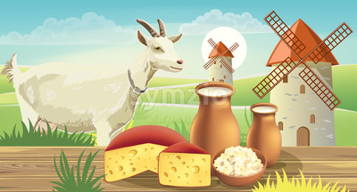 Goat on meadow with wind mills, near a table with cheese , cottage cheese and milk on top. Realistic. 3D mockup product placement. Vector Stock Vector