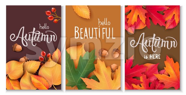 Set of three cards with leaves, acorns and berries. Autumnal thematics. Beautiful season. Vector Stock Vector