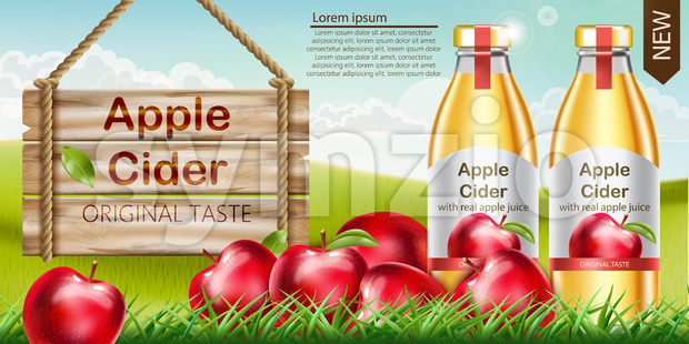Two bottles with golden liquid inside standing on grass, with apples surrounding them and a wooden sign nearby. Place for text. Cider with real apple Stock Vector
