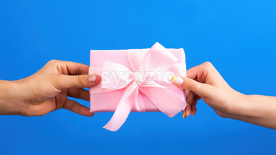 Man giving pink gift box to a woman on blue background. Two hands. Love concept. Stock Photo