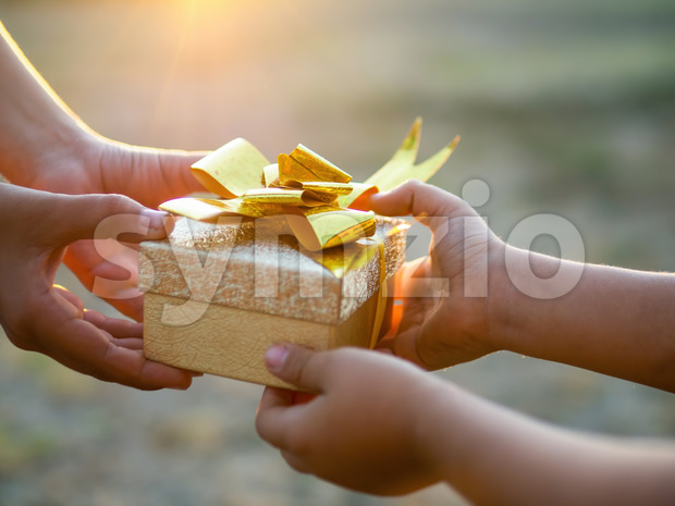 A boy and a kid are holding a gift box with golden tape, setting sun. Holiday concept Stock Photo