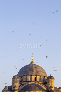 Dome of a mosque flying birds in the sky in Istanbul, Turkey Stock Photo