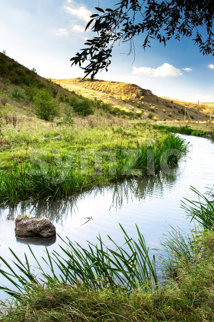 Nature of Moldova, vale with flowing river, reed, high grass and bushes along it, hills on the background, a rock lying in the water Stock Photo