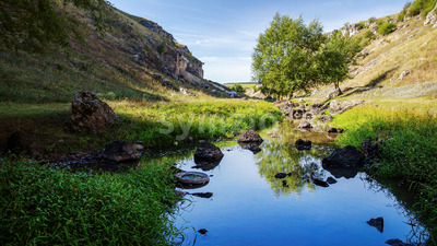 Nature of Moldova, vale with flowing river, high grass and trees along it, hills with rocky slopes, rocks lying in the water Stock Photo
