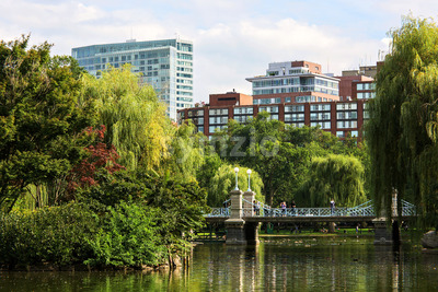 Modern buildings and park with flowers in Boston city, United States of America Stock Photo