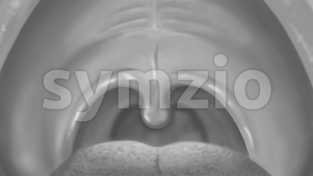 Mouth cavity grey image. Oral care, hygiene and health. Digital background raster illustration. Stock Photo