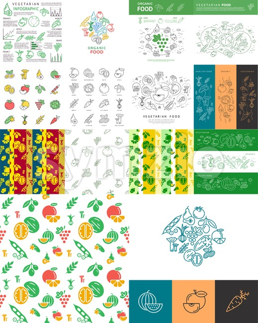 Digital vector green vegetable icons set infographics drawn simple line art, onion squash pear orange apple grape carrot walnut peas watermelon Stock Vector