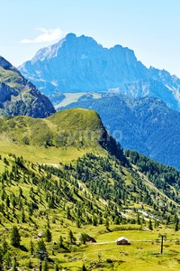 Giau Pass green forest at daylight. Italy Stock Photo
