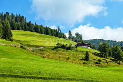 Toblach grass field at daylight. Vibrant colors. Italy Stock Photo