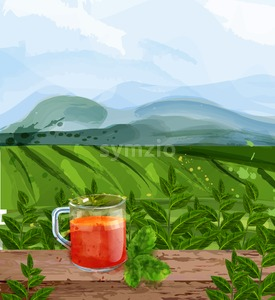 Tea landscape Vector watercolor. Green fields background. Aromatic tea brochure Stock Vector