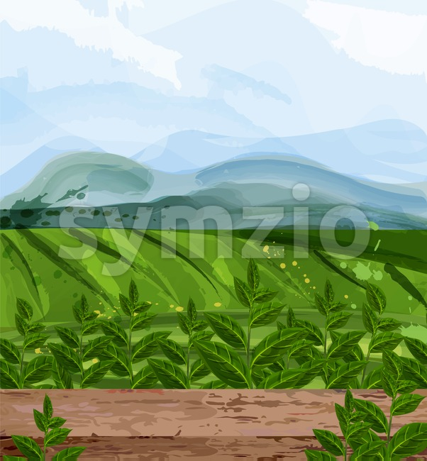 Green fields watercolor background Vector. Nature views. Organic eco fields design Stock Vector