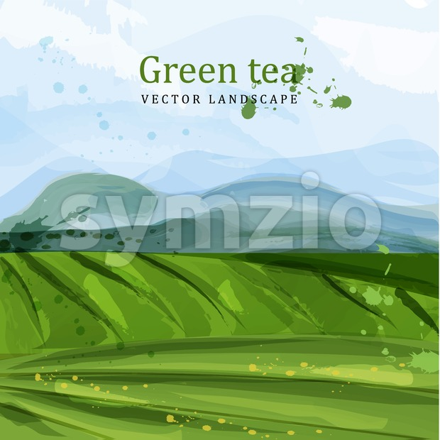Green tea fields watercolor background Vector. Nature mountains views. Organic eco plantation Stock Vector