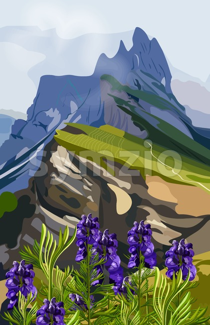 Lavender and mountains hills Vector illustration. Nature background